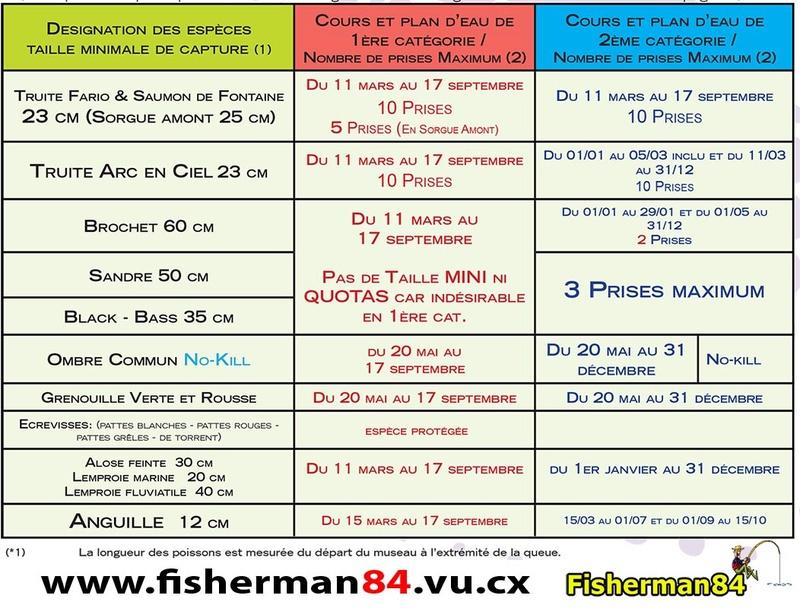 Peut on pêcher la perche en période de fermeture du carnassier ? - Page 2 Dyplia10
