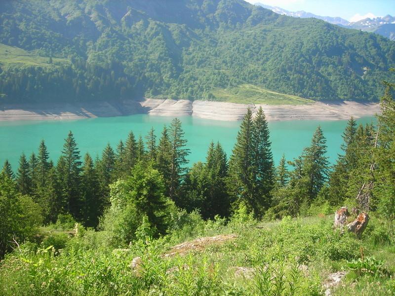 Cr du Tour du Mont Blanc Dscn1010