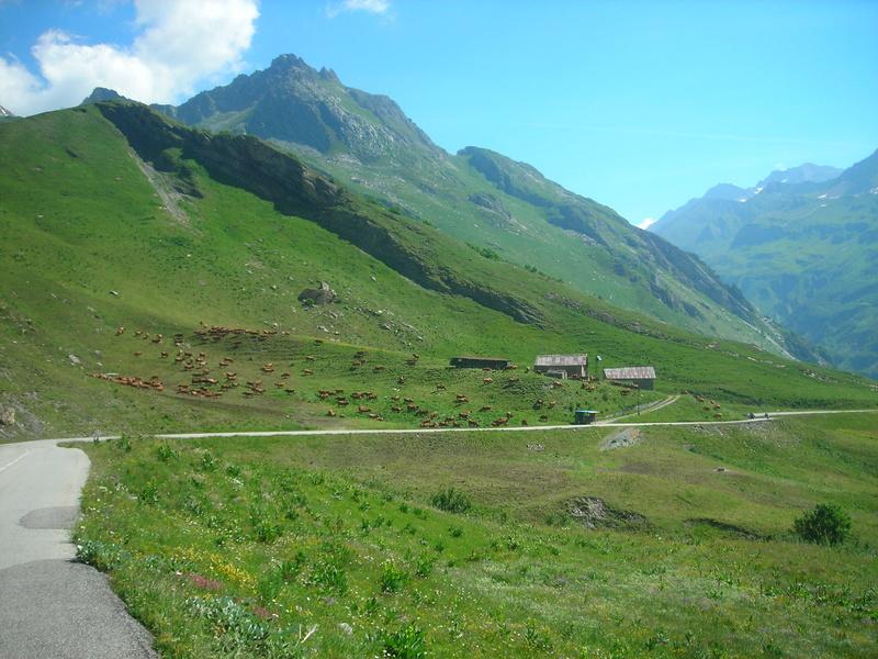 Cr du Tour du Mont Blanc Dscn1012
