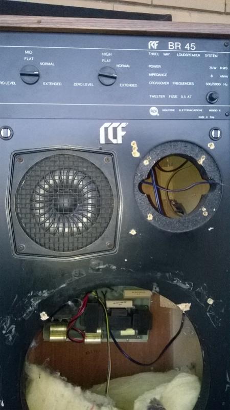 Consigli per ripristinare casse RCF BR45 e Electronic melody (CIARE)  Wp_20110