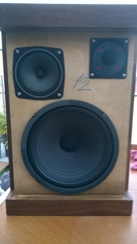 Consigli per ripristinare casse RCF BR45 e Electronic melody (CIARE)  Wp_20111