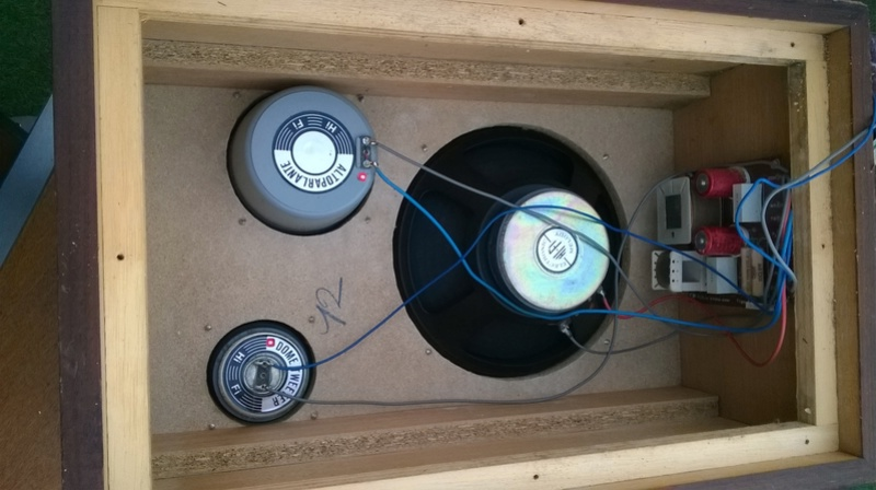 Consigli per ripristinare casse RCF BR45 e Electronic melody (CIARE)  Wp_20113