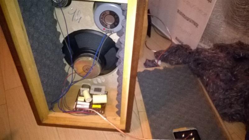 Consigli per ripristinare casse RCF BR45 e Electronic melody (CIARE)  Wp_20122