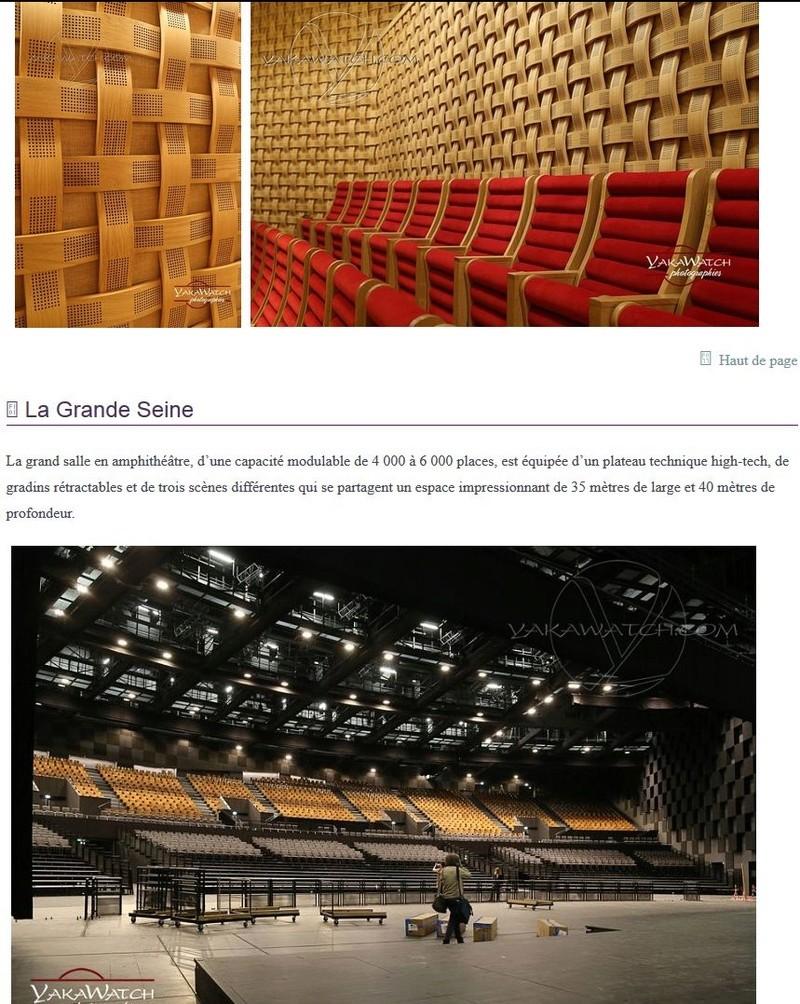 La Seine Musicale de l'île Seguin - Page 5 Clipb544