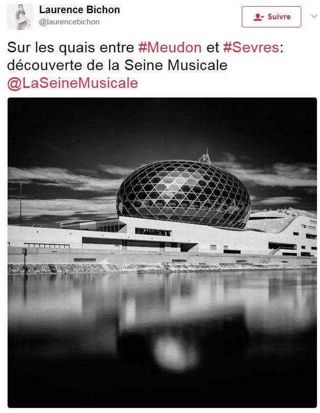 La Seine Musicale de l'île Seguin - Page 4 Clipb654
