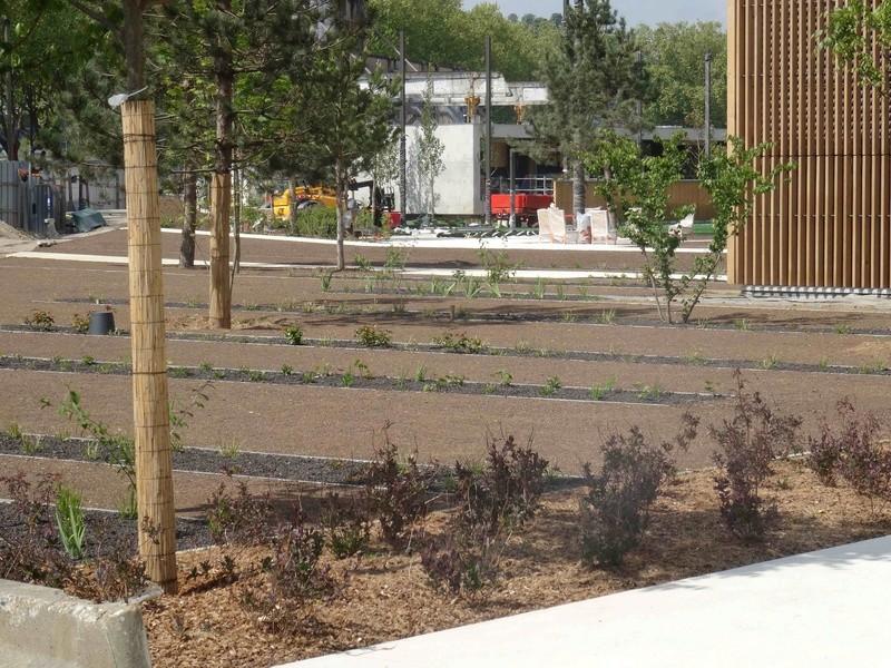 Jardin de la pointe Dsc00151