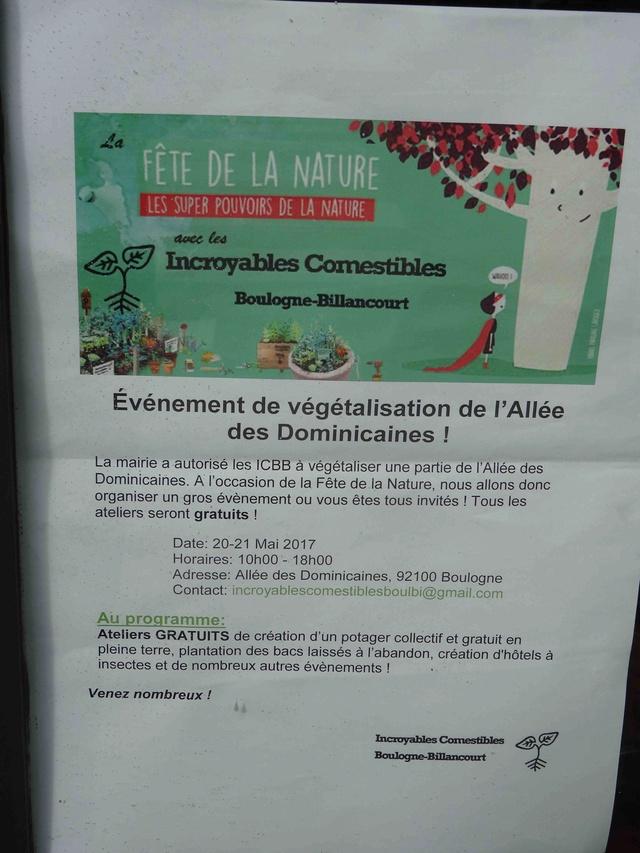 Incroyables Comestibles de Boulogne Billancourt  Dsc00710