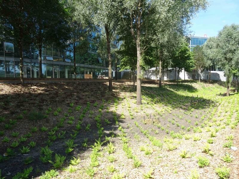 Meudon Campus Dsc01418