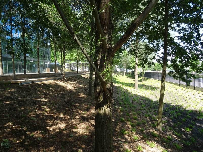Meudon Campus Dsc01421