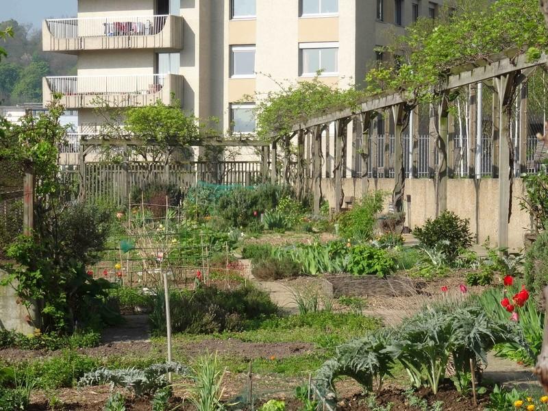 Jardins familiaux du Quartier du Pont de Sèvres Dsc09416