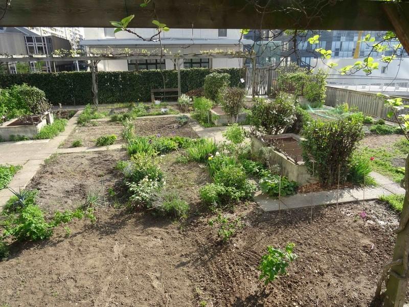 Jardins familiaux du Quartier du Pont de Sèvres Dsc09417