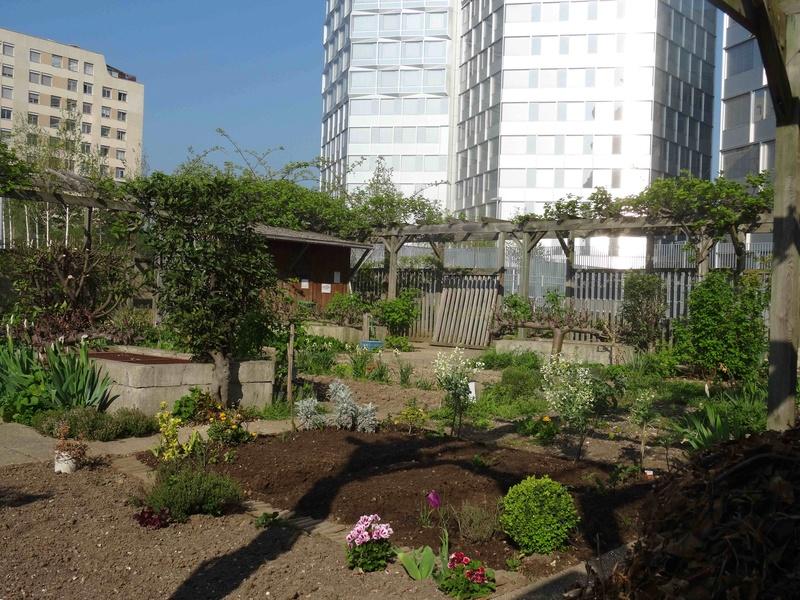 Jardins familiaux du Quartier du Pont de Sèvres Dsc09418