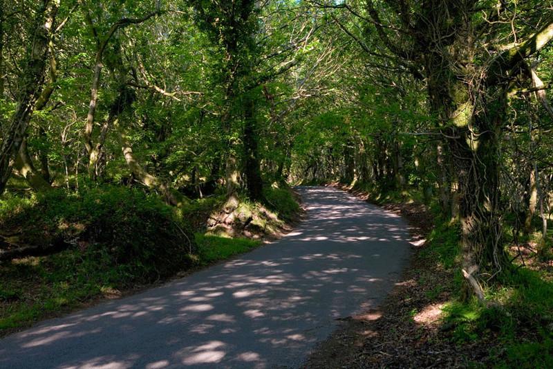 Journée sur les petites routes du parc des volcans d ' Auvergne Image78