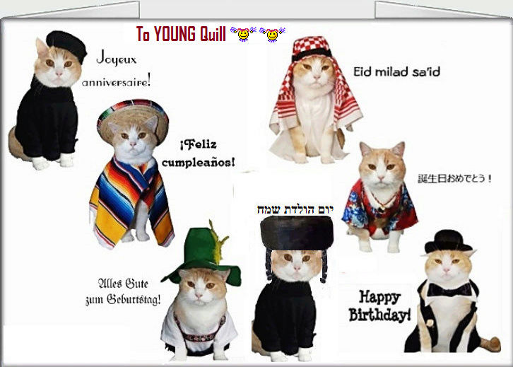 Happy belated birthday Quill!! 1bafda10
