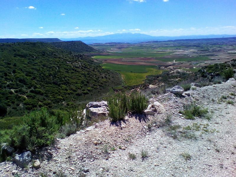 Virée dans les Bardenas et Pyrénées espagnoles Img_2075