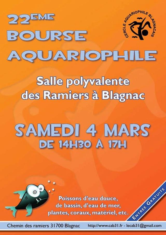 Bourse aquariophile à Blagnac Haute Garonne le samedi 4 mars 2017 Blagna11