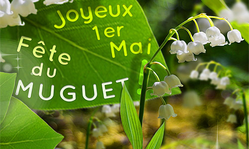 Bon 1er mai avec beaucoup de bonheur Muguet10