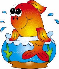 Petit aquarium 19 l pour crevettes Poisso10