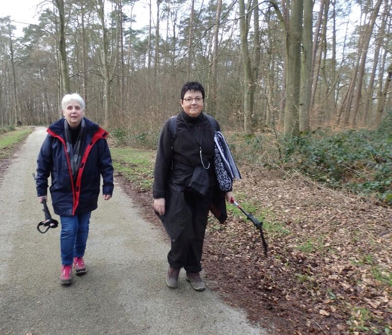 Mardi 7 mars : forêt verte 41-for18