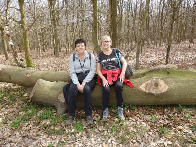Forêt de Roumare : parcours de santé mercredi 29 mars 43-for10