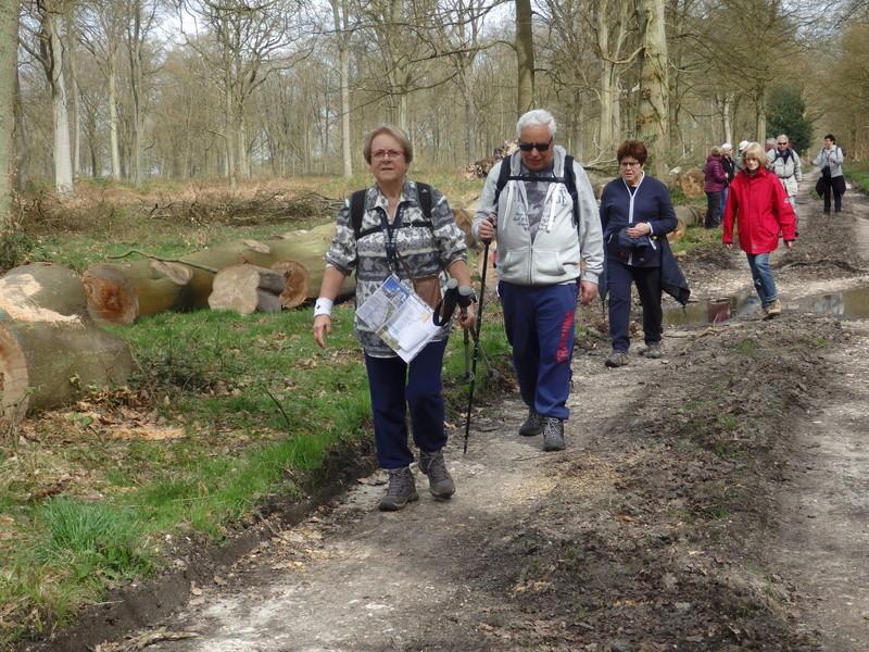Forêt de Roumare : parcours de santé mercredi 29 mars 43-for13