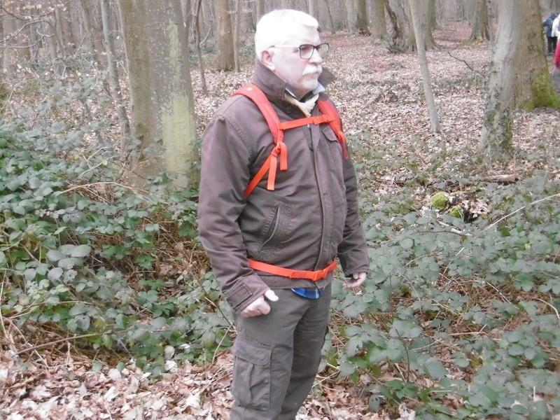 Mardi 7 mars : forêt verte P1000117