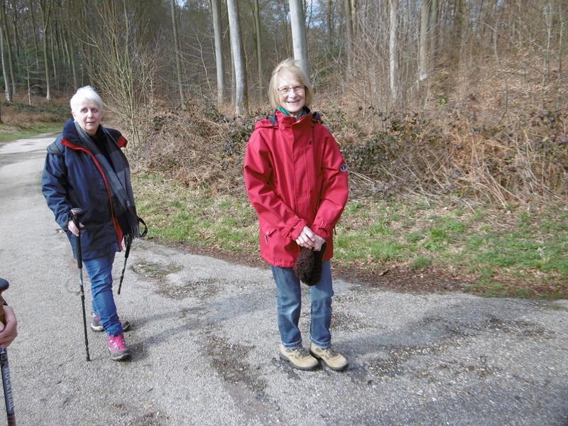 Mardi 7 mars : forêt verte P1000121