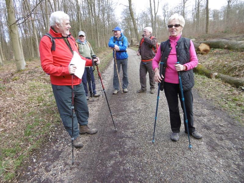 Mardi 7 mars : forêt verte P1000211
