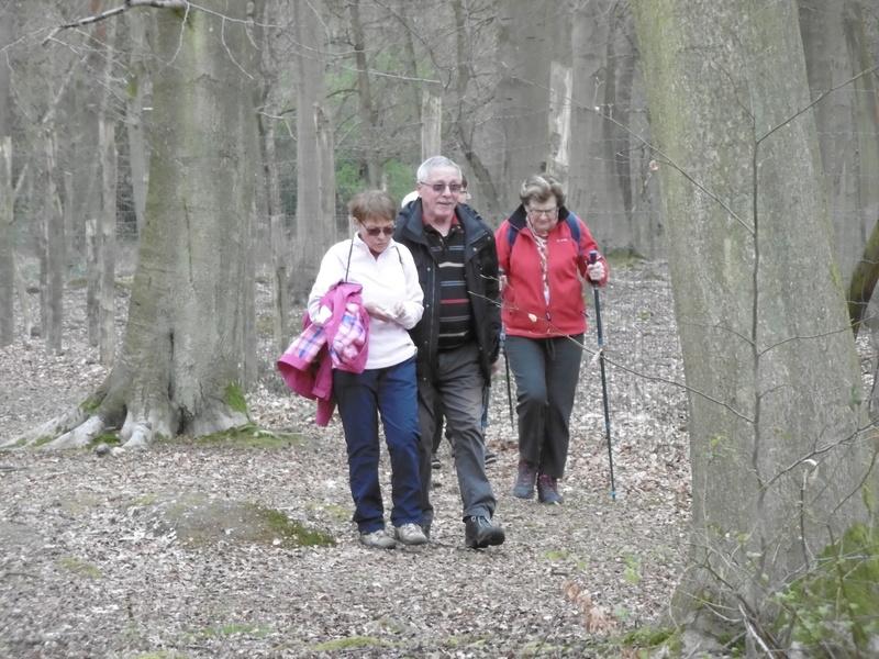 Forêt de Roumare : parcours de santé mercredi 29 mars P1000227