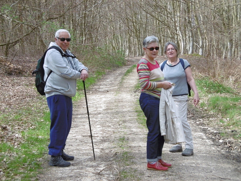 Forêt de Roumare : parcours de santé mercredi 29 mars P1000231