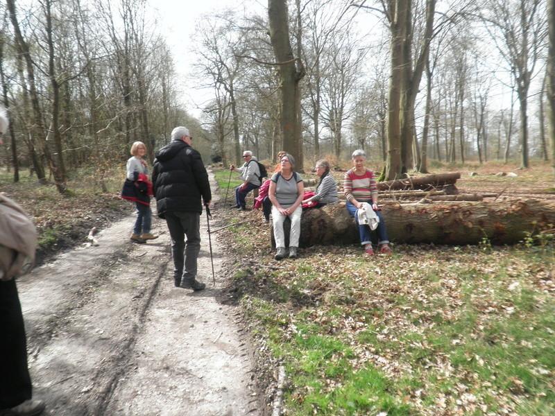Forêt de Roumare : parcours de santé mercredi 29 mars P1010440