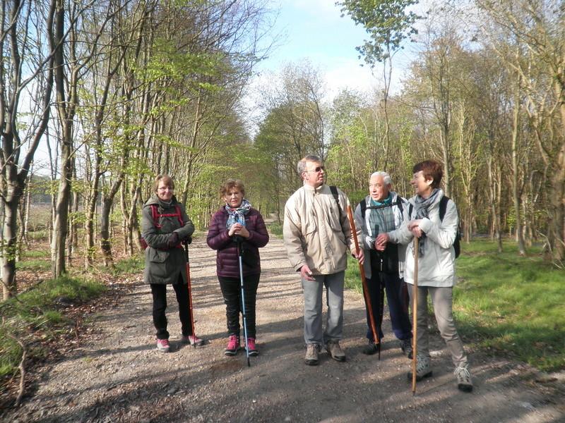 Forêt de Roumare : samedi 30 avril P1010540