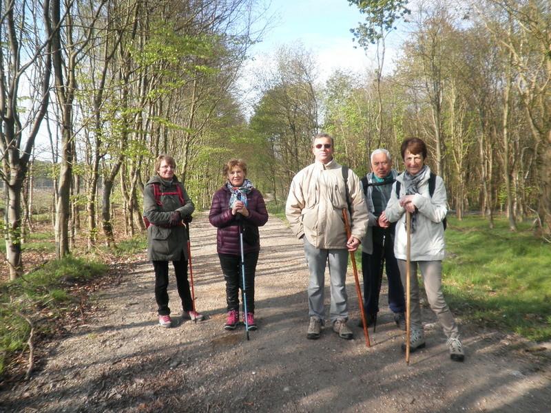 Forêt de Roumare : samedi 30 avril P1010541