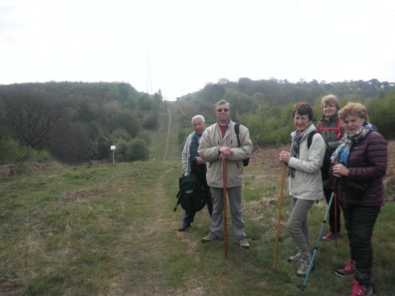 Forêt de Roumare : samedi 30 avril P1010543