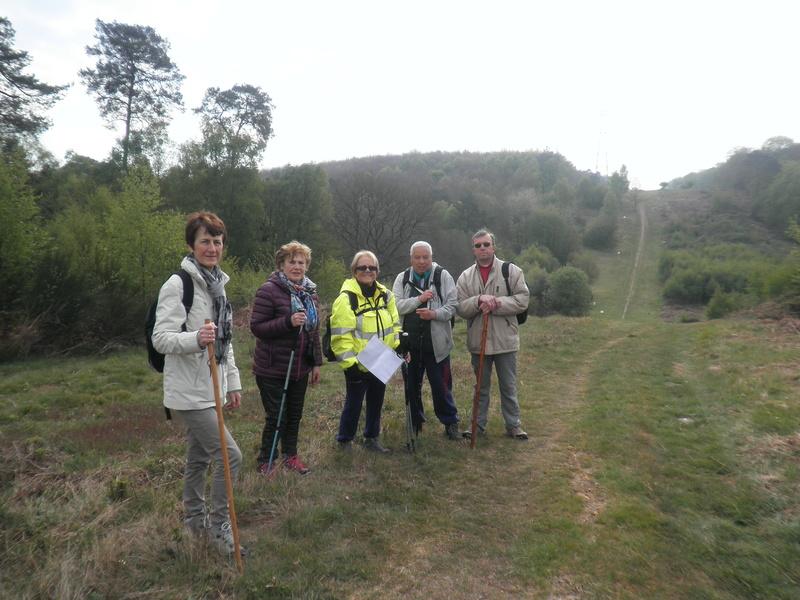 Forêt de Roumare : samedi 30 avril P1010546