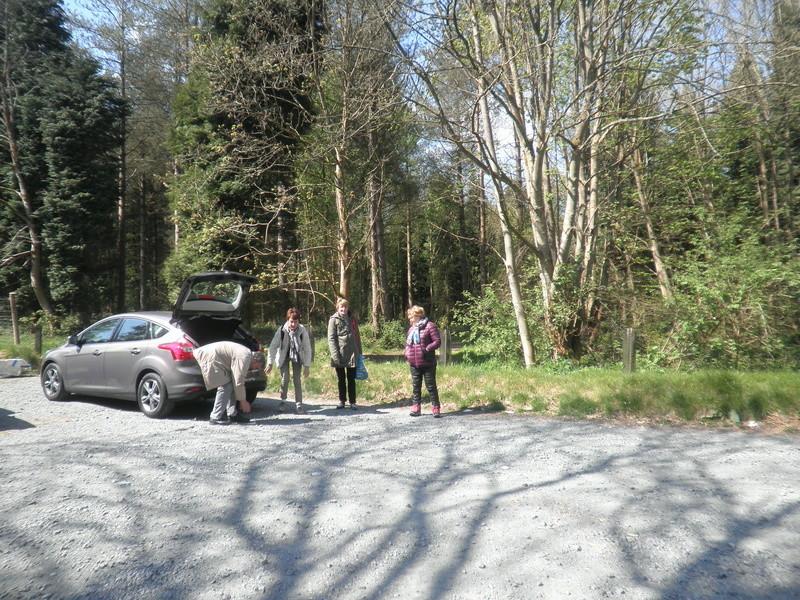 Forêt de Roumare : samedi 30 avril P1010547
