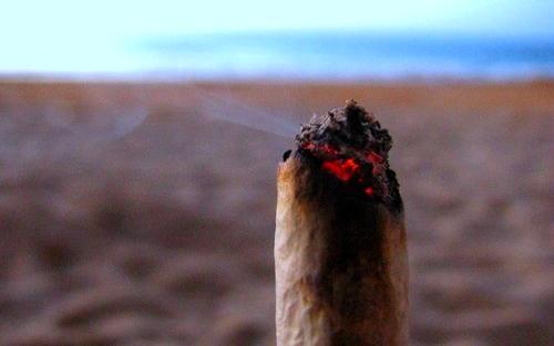 Fumez-vous du cannabis à la plage ? Weed10