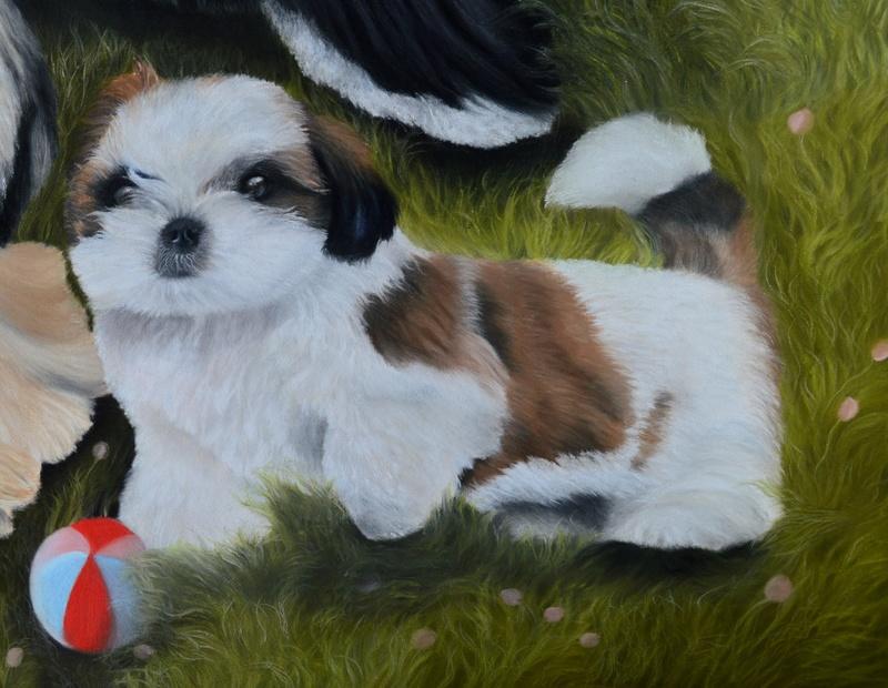 Portraits animalier et quelques dessins personnels - Page 2 0111