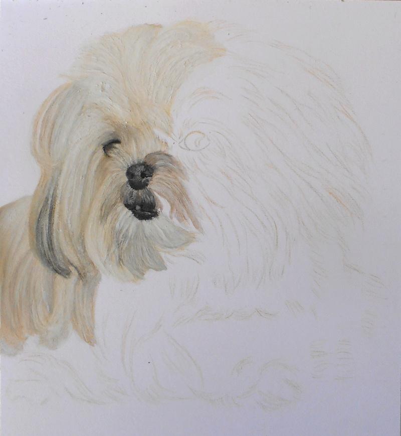 Portraits animalier et quelques dessins personnels - Page 4 111