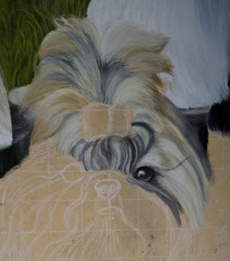 Portraits animalier et quelques dessins personnels - Page 2 314