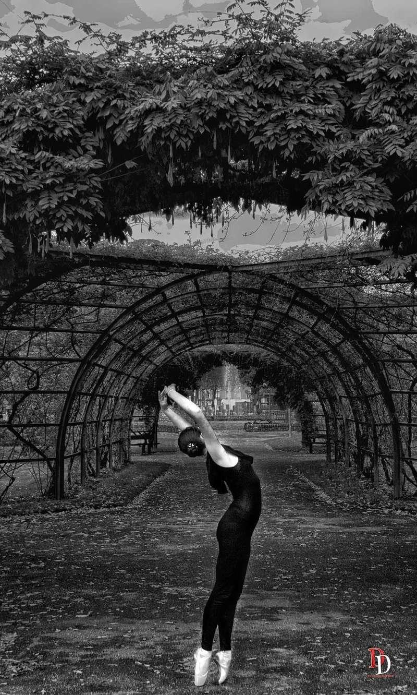 Danseuse d'Angers Dsc_0112
