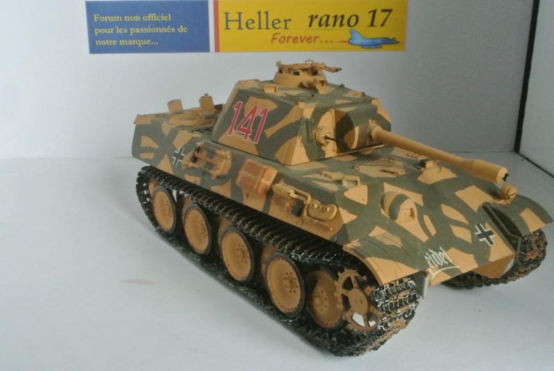 demande d'aide char Panther  Dsc_3915