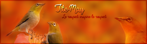 Tite-May