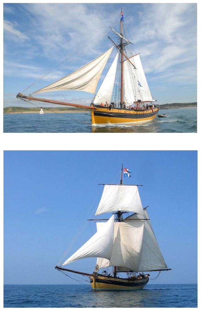Le patrimoine navigant, bâti de notre littoral et les réserves naturelles marines - Page 4 Combat10
