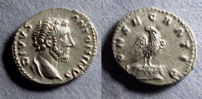Denier posthume inédit d'Antonin le Pieux Zx7gj610