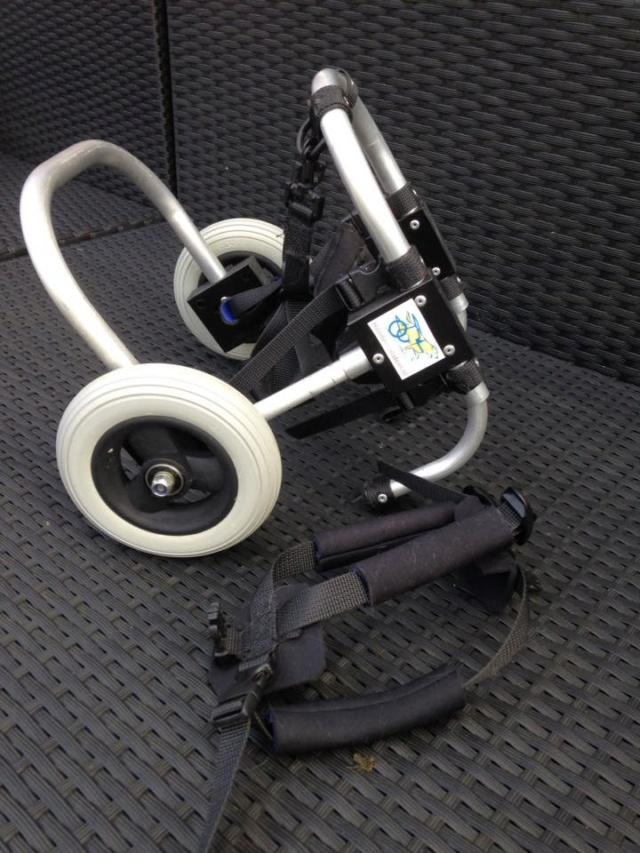 Een rolstoel voor Kika 28_jan10
