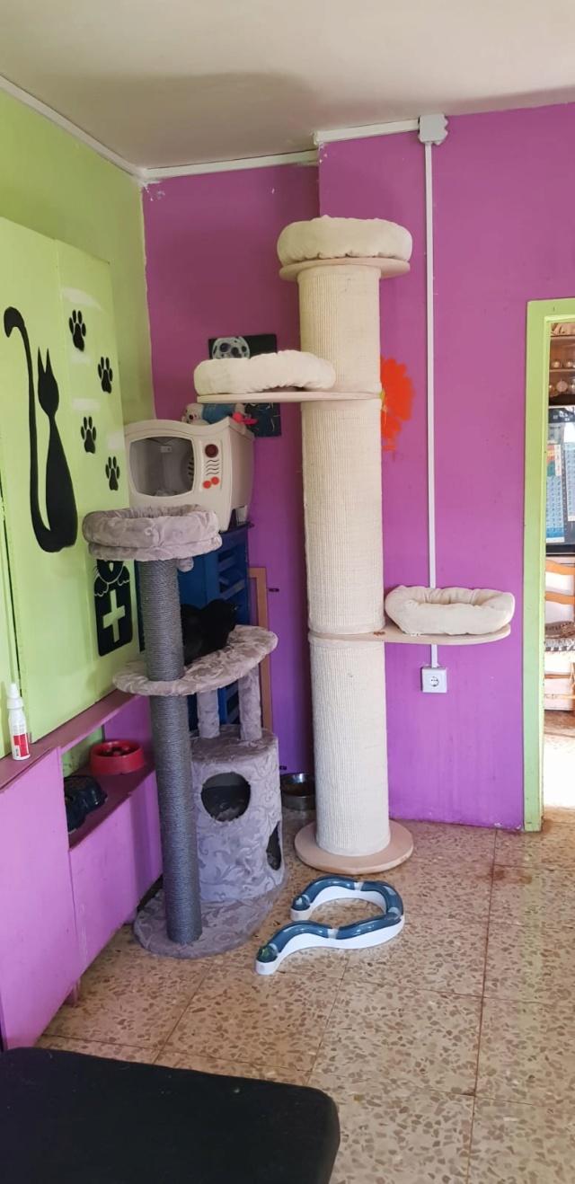 Krabpalen voor Canis y Felis - Blije katten 34a10