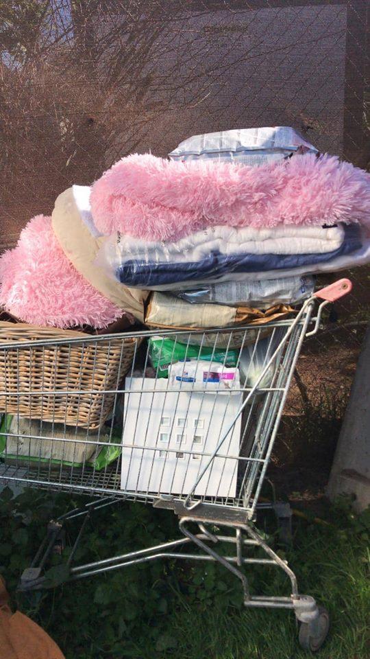 Transport 2 pallets aangekomen bij Canis y Felis 50045910