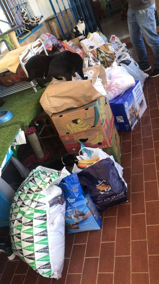 Transport 2 pallets aangekomen bij Canis y Felis 50414310