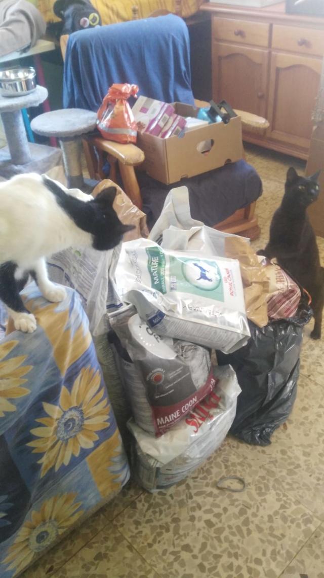 Krabpalen voor Canis y Felis - Blije katten 572